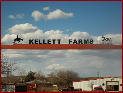 Horse Camp @ Kellett Farms Horse Facility