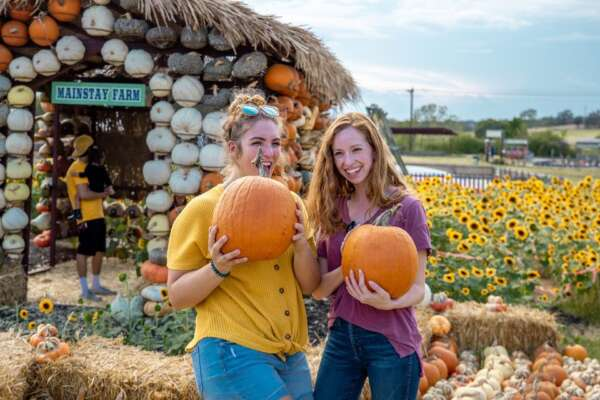 Fall Pumpkin Days @ Mainstay Farm Park